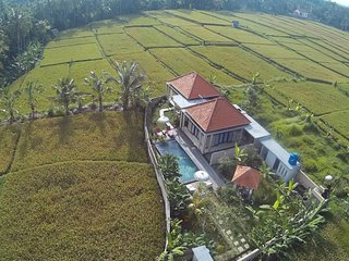 Nice Villa with Internet Access and A/C - Ubud vacation rentals