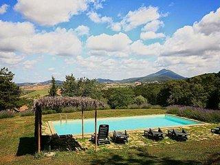 6 bedroom Villa in San Casciano dei Bagni, Val d Orcia, Tuscany, Italy : ref - Trevinano vacation rentals