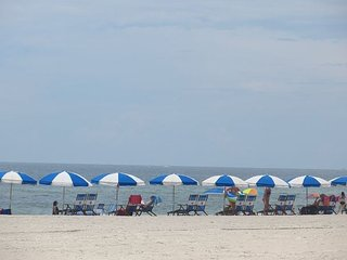 **FAMILY OF 4 DOLPHIN TICKETS FREE** 4/28-4/30 3 NIGHT STAY $494.16** - Gulf Shores vacation rentals