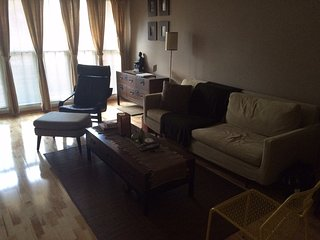 Cozy 2 bedroom Condo in Minneapolis - Minneapolis vacation rentals