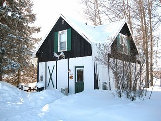Fireplace, 3 BR 1 bath-Rustic Cabin-Big Powderhorn - Bessemer vacation rentals