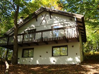 Spacious 4 BR 2 bath Fireplace at Big Powderhorn - Bessemer vacation rentals