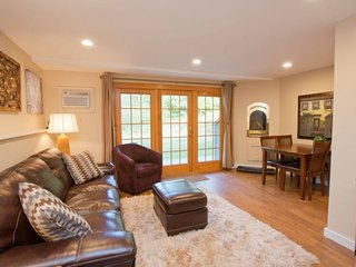 Newly remodeled and furnished 1 Bedroom at Topnotch Resort! Just 100 yds from Spa! Perfect for Small Families or a Romantic Getaway! - Stowe vacation rentals