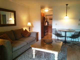 Indulge yourself at the Spa at Topnotch! Lovely 1BR condo at Topnotch Literally steps away from the Spa!! - Stowe vacation rentals
