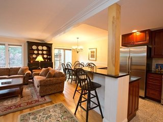 Perfect House for the Entire Family! DOG FRIENDLY! - Stowe vacation rentals