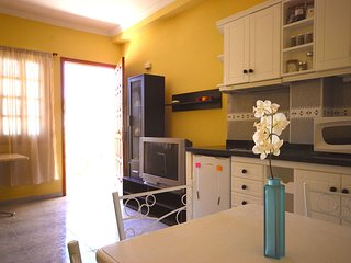Comfortable apart pool & garden - Playa del Ingles vacation rentals