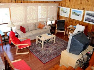 Bright Cottage with Deck and Internet Access - Otter Lake vacation rentals