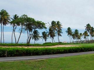 Impressive Beach Accessible Oceanside Villa (BV228) - Humacao vacation rentals