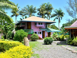 Fare Manu - Maharepa vacation rentals