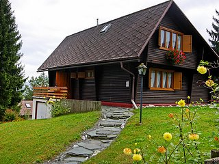 Sunny 3 bedroom Chalet in Görtschach - Görtschach vacation rentals