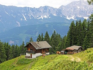 Sunny 2 bedroom Chalet in Dellach - Dellach vacation rentals