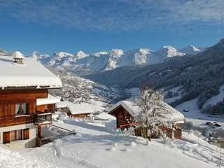 Bright 3 bedroom Le Grand-Bornand Apartment with Television - Le Grand-Bornand vacation rentals