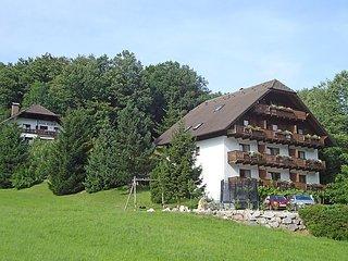 Beautiful 1 bedroom Villa in Unterach am Attersee - Unterach am Attersee vacation rentals