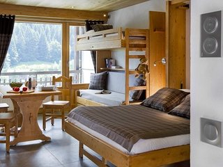 Charming Le Grand-Bornand Studio rental with Television - Le Grand-Bornand vacation rentals