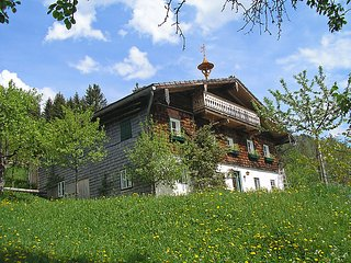 Sunny 4 bedroom Farmhouse Barn in Abtenau - Abtenau vacation rentals
