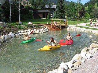 Beautiful 1 bedroom House in Russbach am Pass Gschutt - Russbach am Pass Gschutt vacation rentals