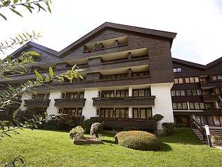 Sunny 1 bedroom House in Bad Hofgastein - Bad Hofgastein vacation rentals