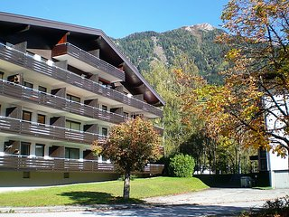 Sunny 1 bedroom House in Bad Hofgastein - Bad Hofgastein vacation rentals