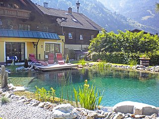 Bright 1 bedroom House in Bad Hofgastein - Bad Hofgastein vacation rentals