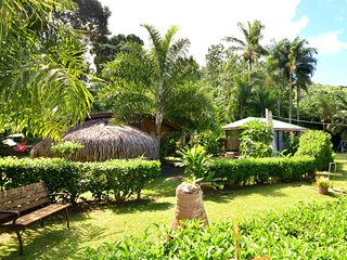 Fare Fetia - Maharepa vacation rentals