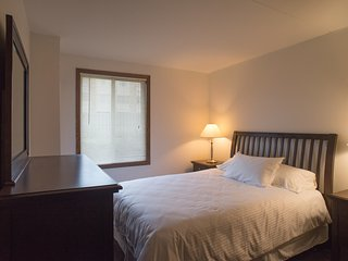 Beautiful Condo with Internet Access and A/C - Edina vacation rentals