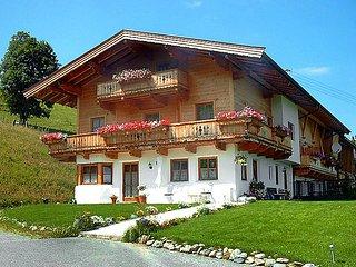 Sunny 1 bedroom Vacation Rental in Kirchberg - Kirchberg vacation rentals