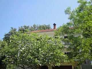 KUTLESA DAVOR(2168-5544) - Soline vacation rentals