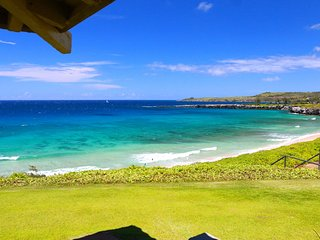 1 bedroom House with A/C in Kapalua - Kapalua vacation rentals