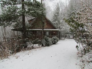 Charming Cabin on the River (great location) - Burnsville vacation rentals