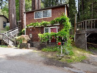 Sunny 1 bedroom Guerneville House with Deck - Guerneville vacation rentals