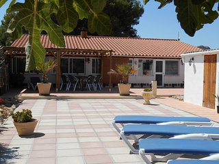 Beautiful Finca with Internet Access and Satellite Or Cable TV - Villena vacation rentals