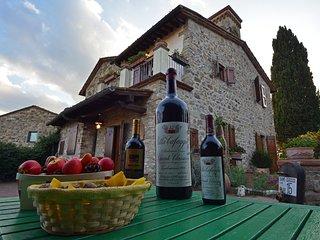 Charming 4 bedroom Villa in Panzano - Panzano vacation rentals