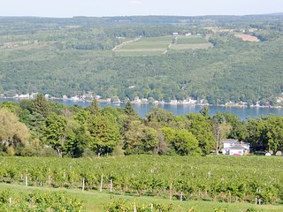 Enjoy the Vineyard View on Keuka Lake Wine Trail - Hammondsport vacation rentals