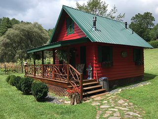 Little River's (Tiny House) or (Honeymoon cabin) - Sugar Grove vacation rentals