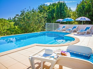 Villa  Peric with private pool for up to 12 person - Cilipi vacation rentals