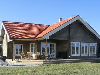 Nybyggd timmerstuga med fantastisk sjöutsikt - Kopparberg vacation rentals