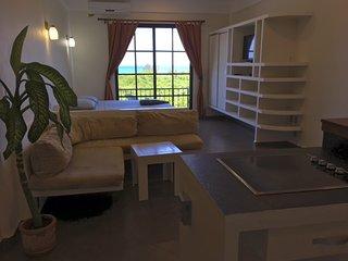 incredible ocean view studio - Playa Paraiso vacation rentals