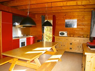 Beautiful Chalet lakeview sauna 12p. near slopes - Gerardmer vacation rentals