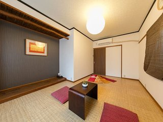 DS1/Doutonbori Guesthouse for separate - Osaka vacation rentals