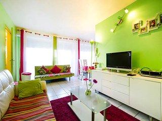 Appartement t2 bordeaux centre , gare saint jean - Begles vacation rentals