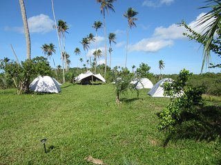 Camping at the riverside of the Rio Real ..unique! - Mangue Seco vacation rentals