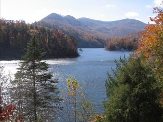 Nice House with Internet Access and A/C - Tuckasegee vacation rentals
