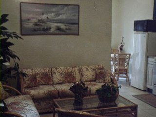 Adorable Studio with Satellite Or Cable TV and Parking - Crystal Beach vacation rentals
