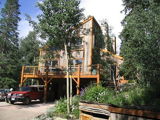 Lovely 3 bedroom House in Telluride with Deck - Telluride vacation rentals