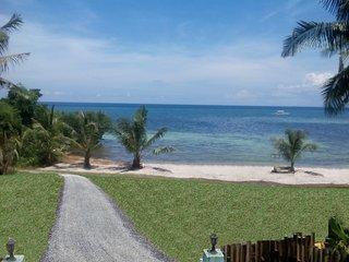 Beach House on Private White Sand Beach Near Alona - Tawala vacation rentals