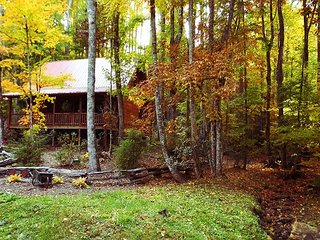 Log Cabin  with Hot Tub, WiFi, Creekside & Pet Friendly! - Todd vacation rentals