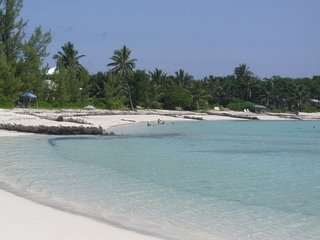 Osprey Nest 2 Bahamas Beachside Cottage Sleeps 4 - Green Turtle Cay vacation rentals