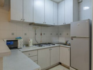 Cheap n Good 1-bedroom Apt F8 - Singapore vacation rentals
