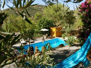 Villa Vital Oasis among olive groves - Almedinilla vacation rentals