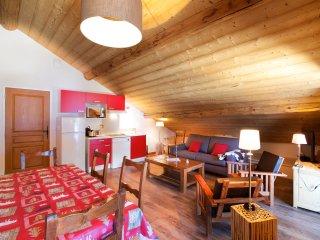 Mont Blanc Lodge - Flèche Lodge - Hauteluce vacation rentals